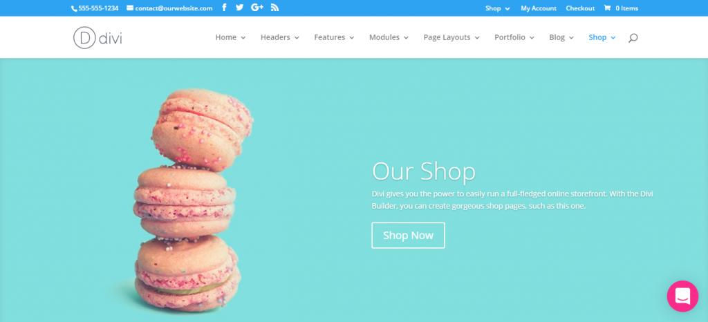 Divi WordPress WooCommerce theme